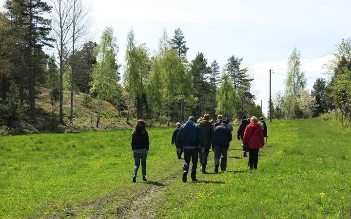 Göta virke, Östergötlands unika försvarsvall
