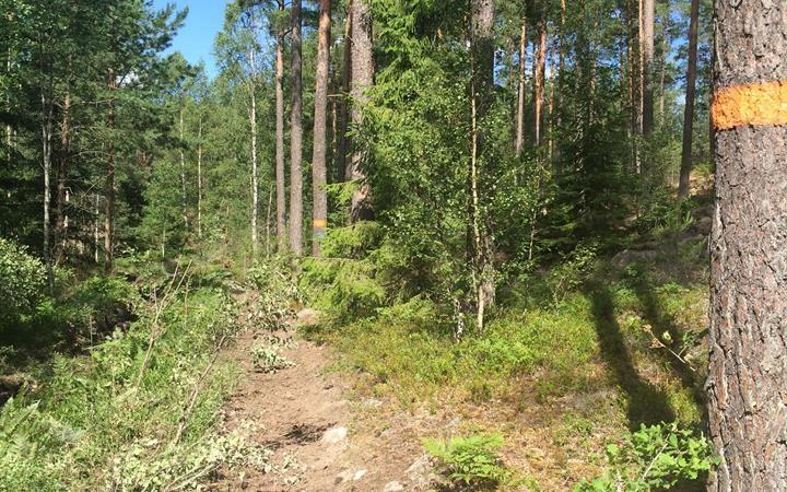 Ramunderborgen, Östergötlands unika fornborg