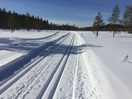 Järvsö Sportcamp