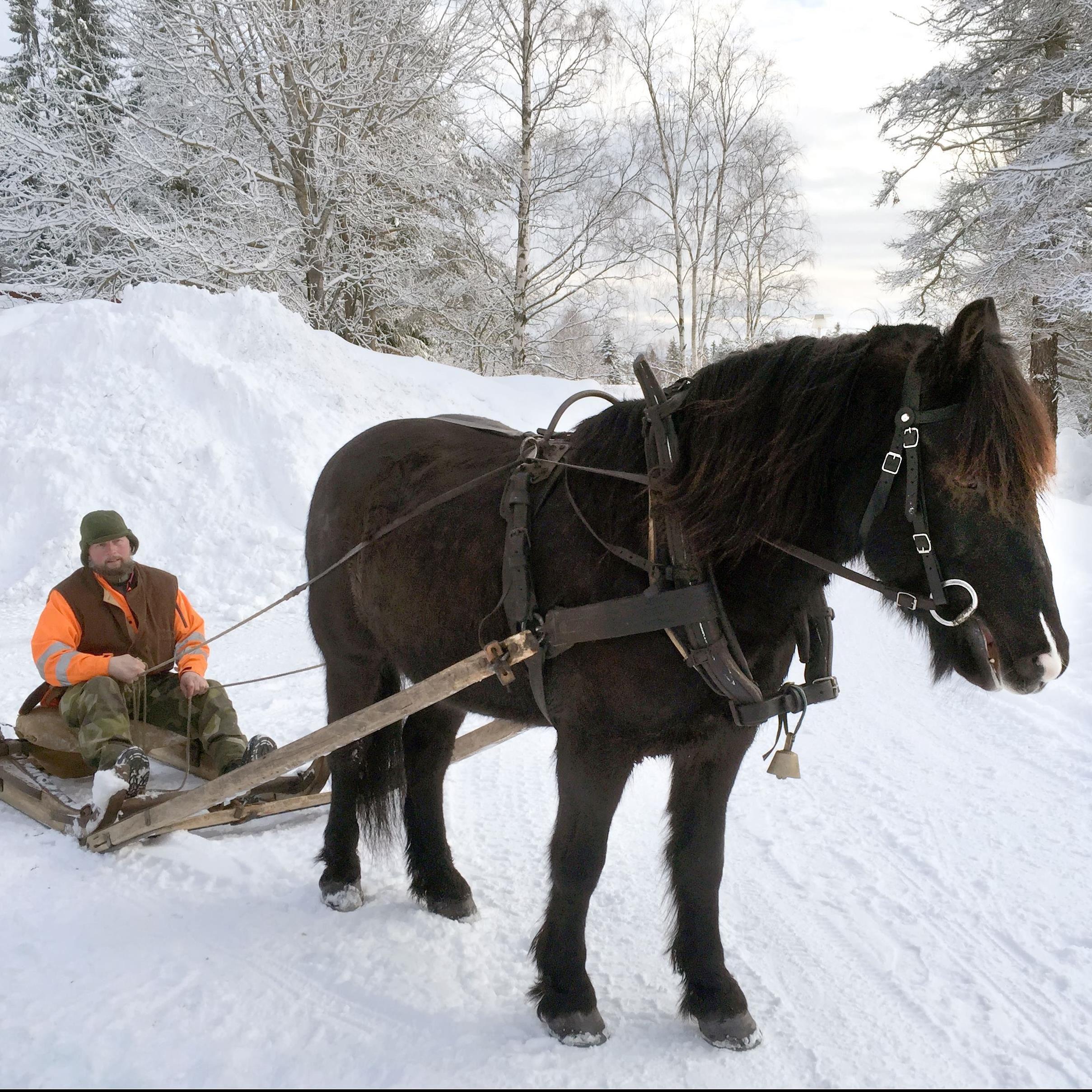 Anette Tjärnberg,  © Sundsvalls museum, Sportlov på Norra Berget