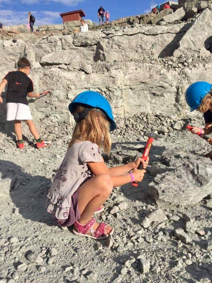Liten Fossilskola för hela familjen