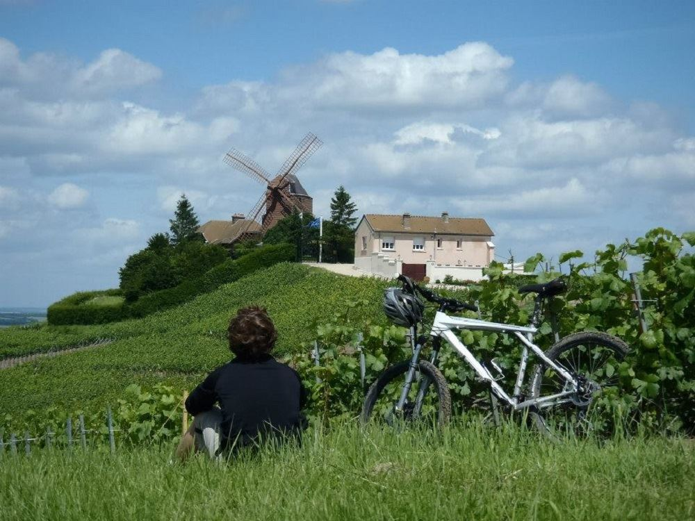 Champagne Bike Tour - half day
