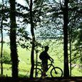 Le vignoble à vélo - journée complète