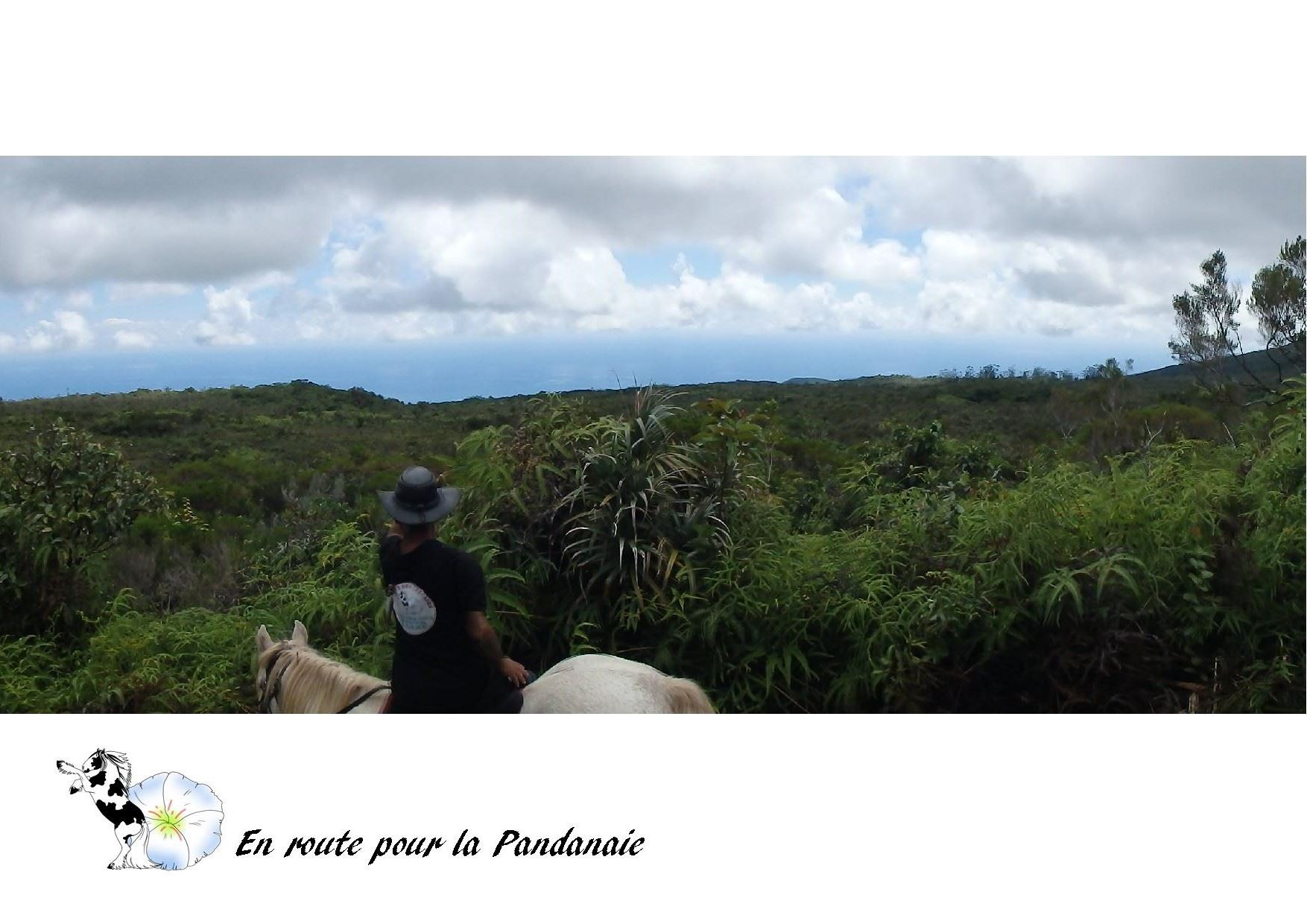 A la découverte de la pandanaie et des cascades à cheval + repas