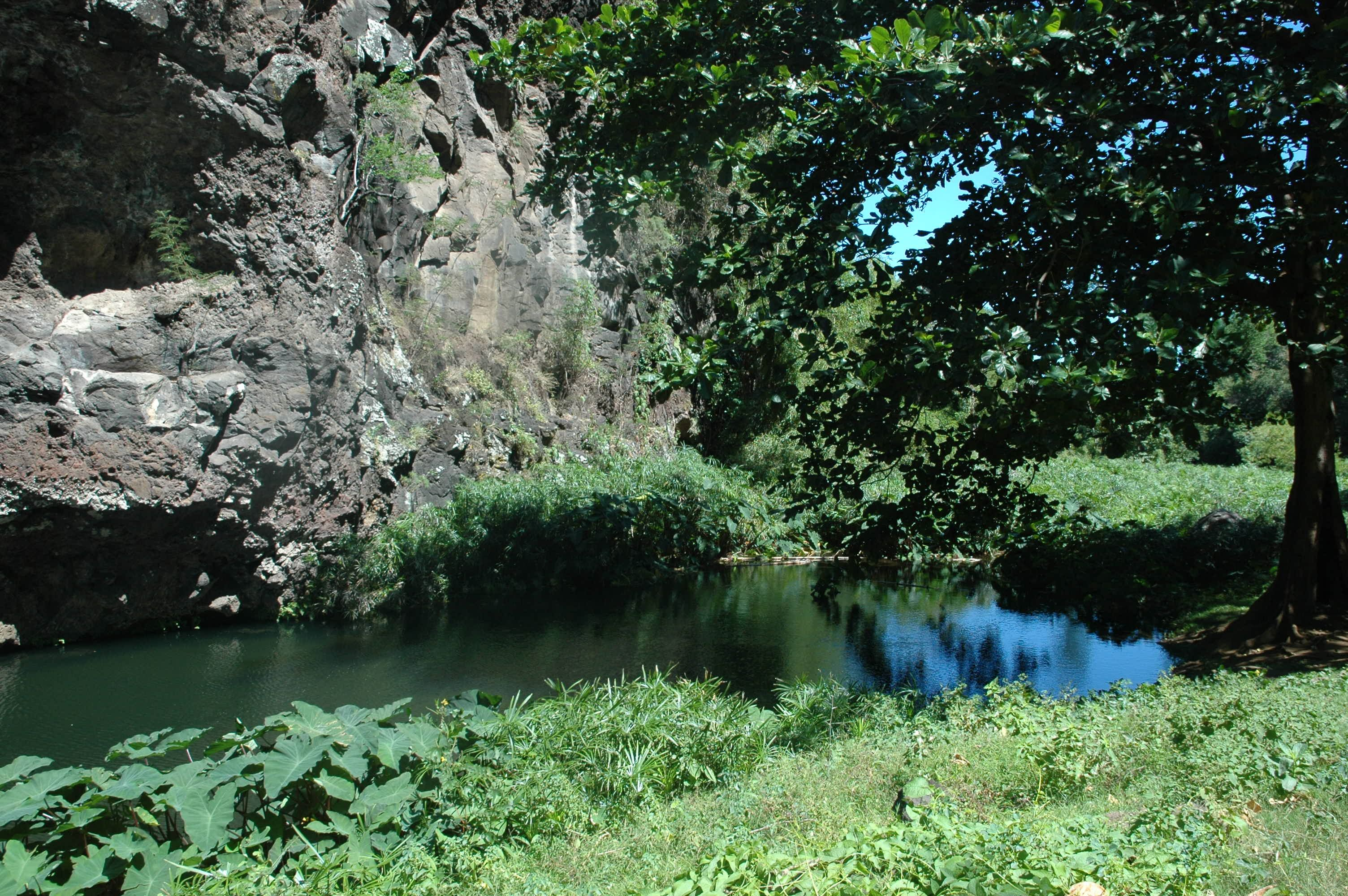 Zarlor flânerie Bassin Long