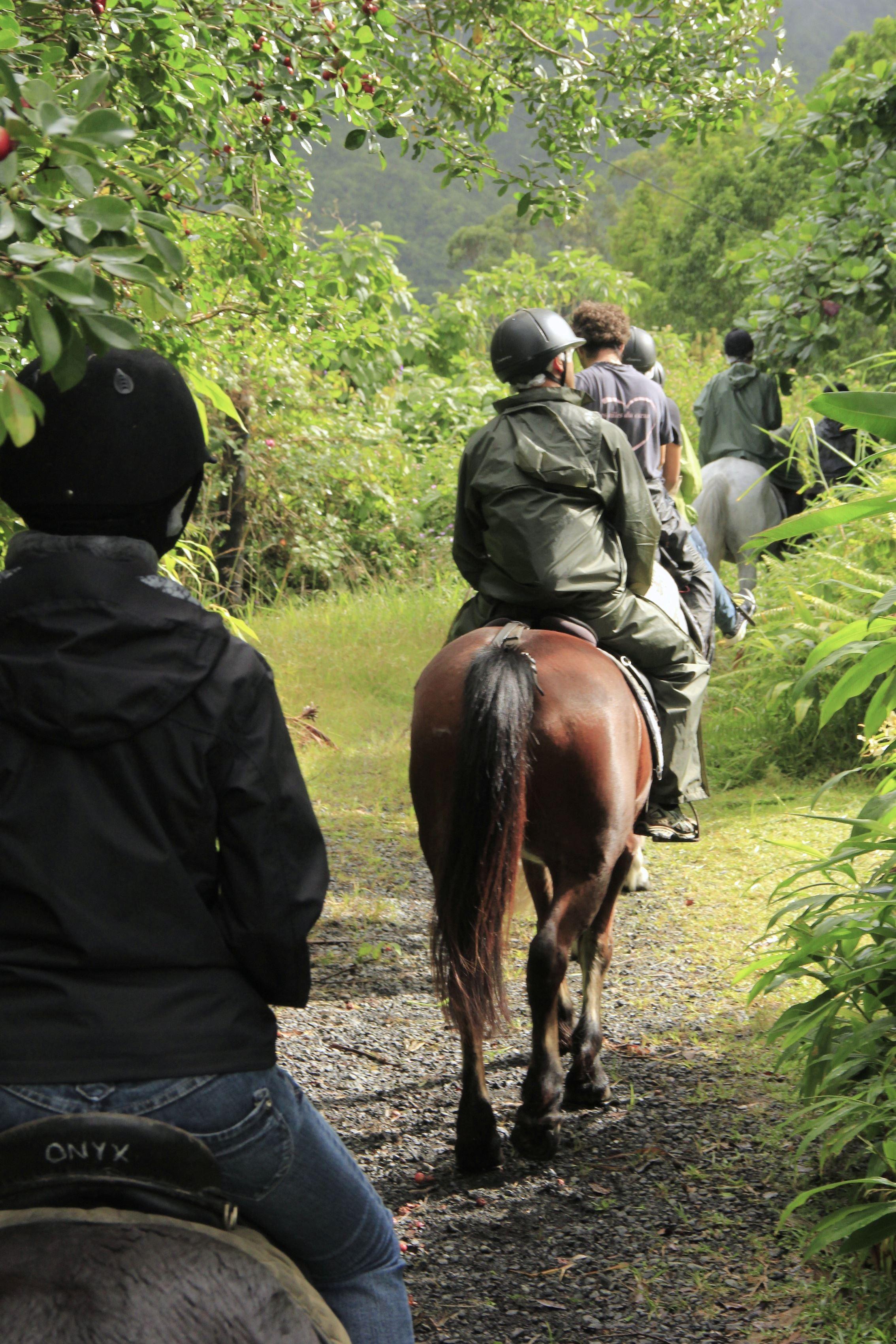 Balade équestre : Le circuit des cascades à cheval + repas