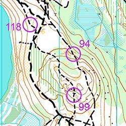 Träningskarta Bjästamon (MtbO)