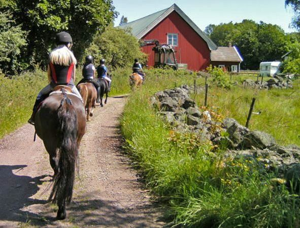 Turistridning hos Kvilla Sörgården