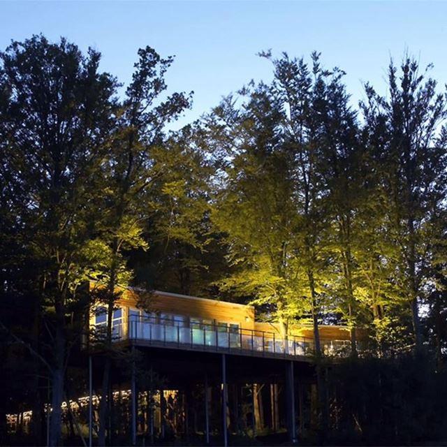 Söndagspicknick i Hovdala Trädhus
