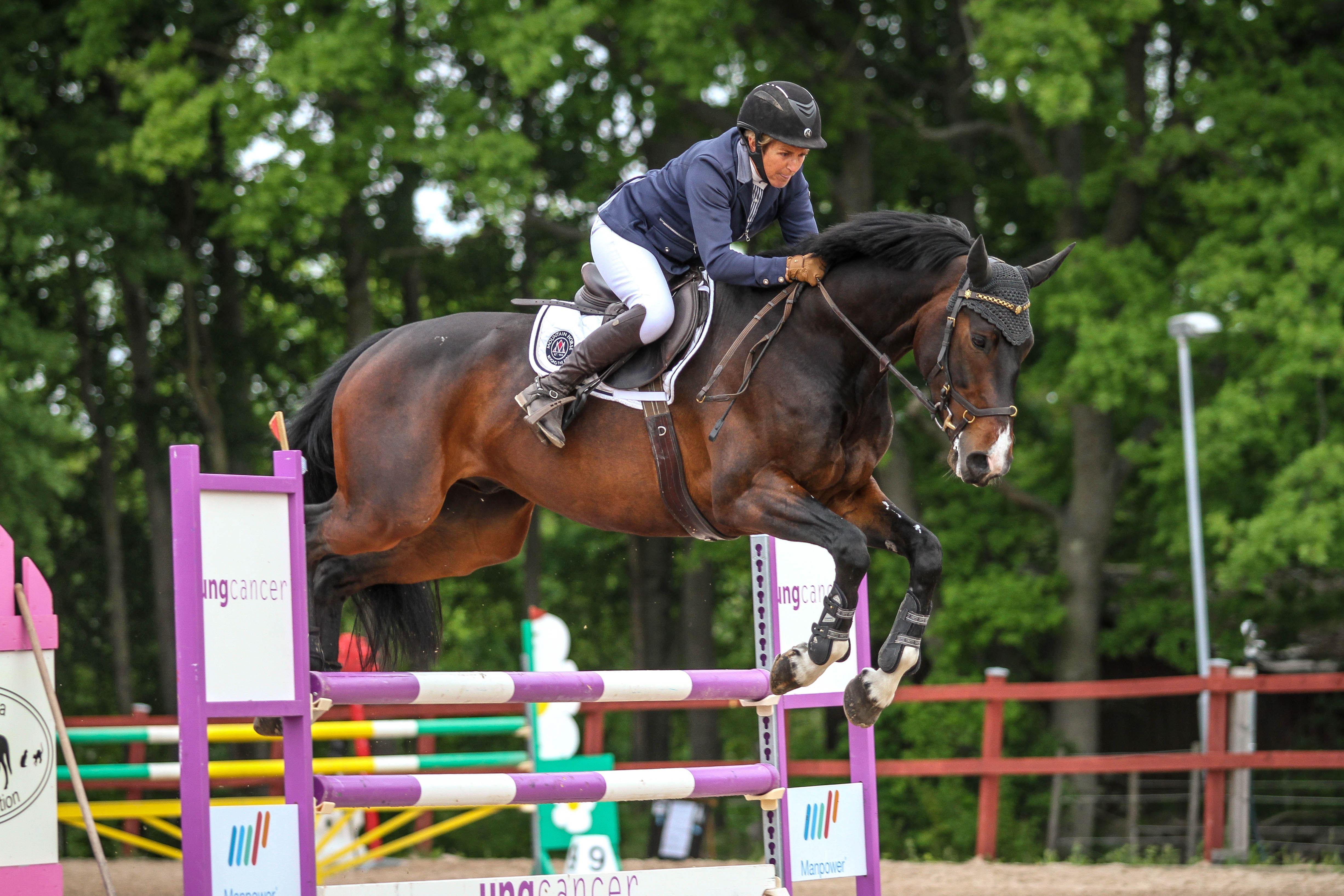 Pingsttävlingar i hästhoppning