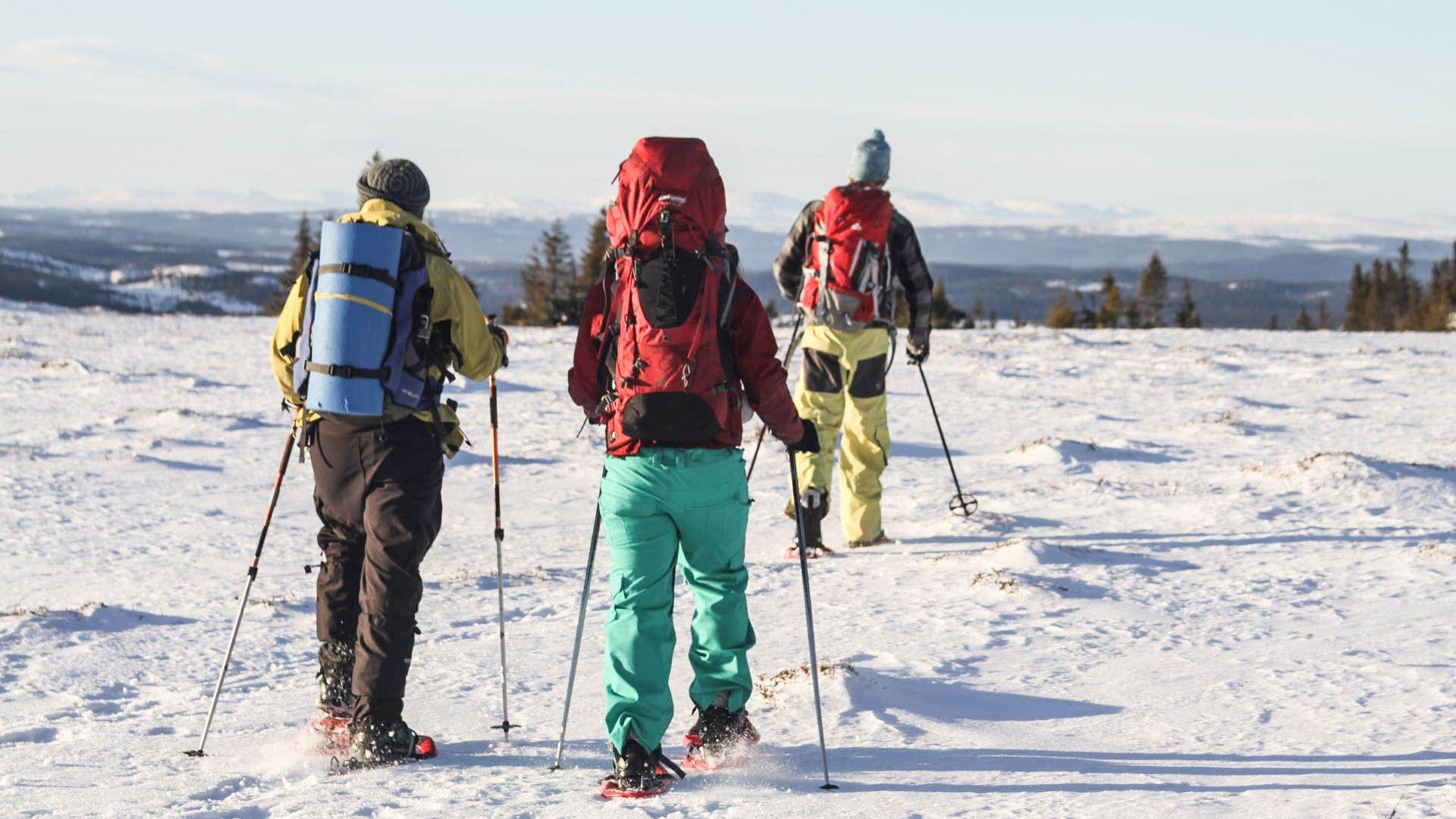 Snöskovandring i Årefjällen