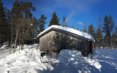 Holmsjökojan, Drevfjällens naturreservat