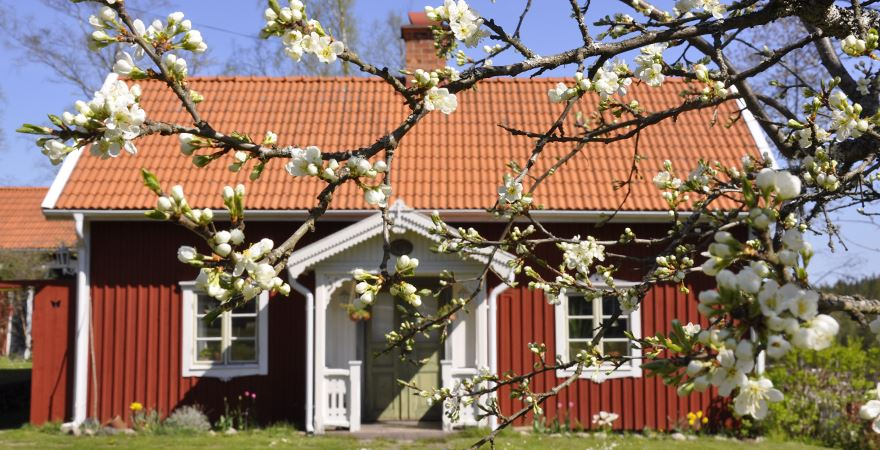 Mors Dag hos Knastorp Kaffe o Kultur