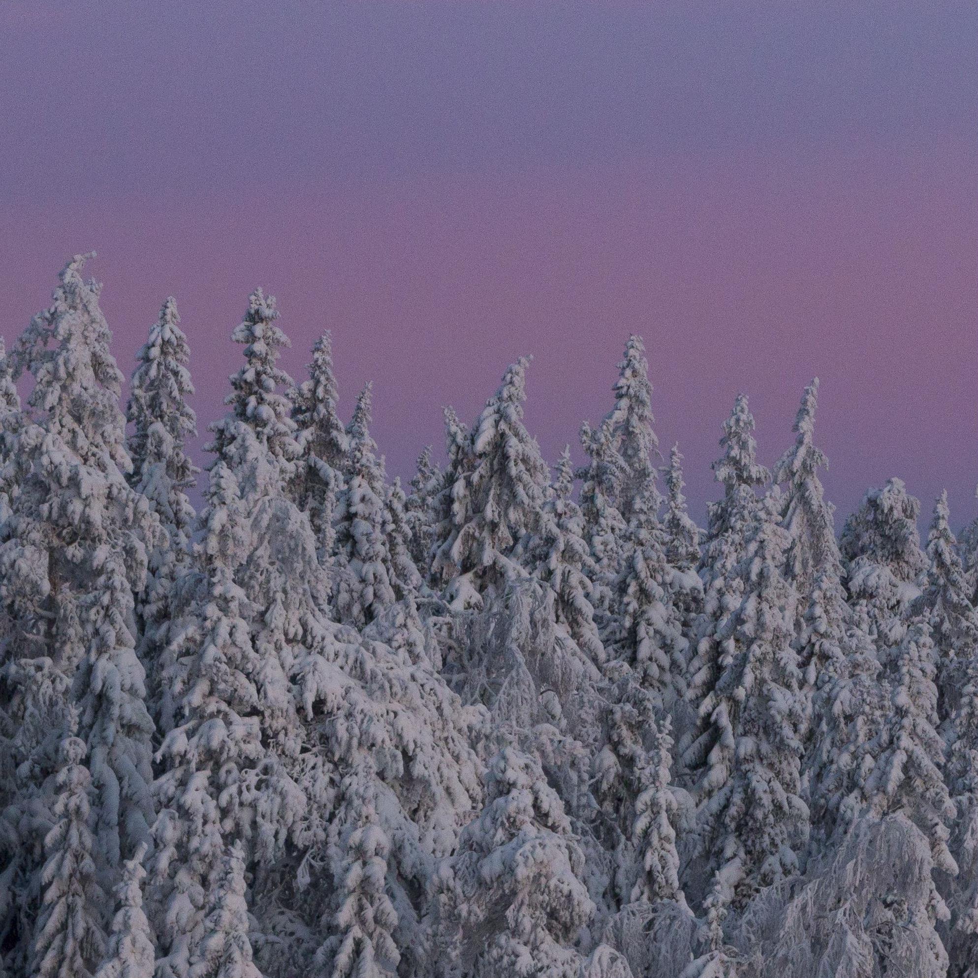 Fotoutställning - Skyddad natur i Dalarna av Alfred Björklund