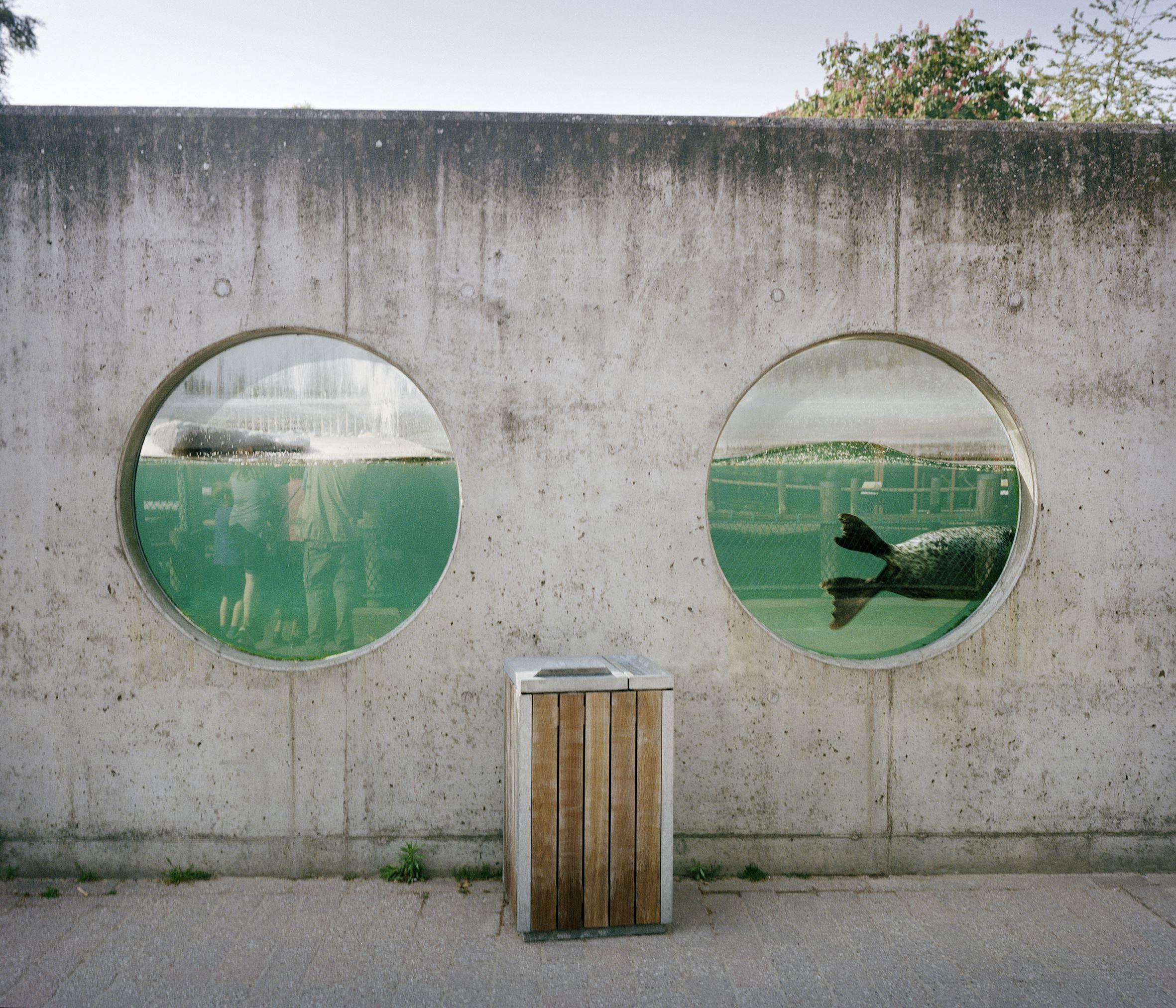 Zoo World - Julia Lindemalm