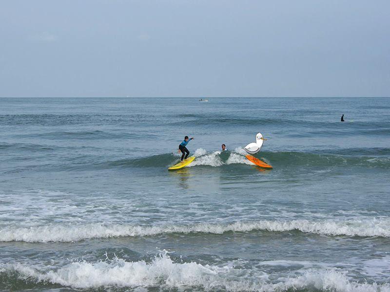 BAPTEME SURF