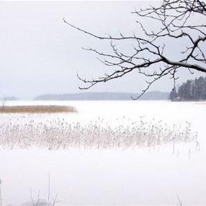 Divaanikivi | Pätiälän kartanon lomamökit