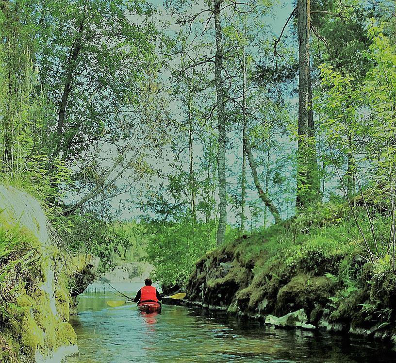 Best Lake Nature Adventures