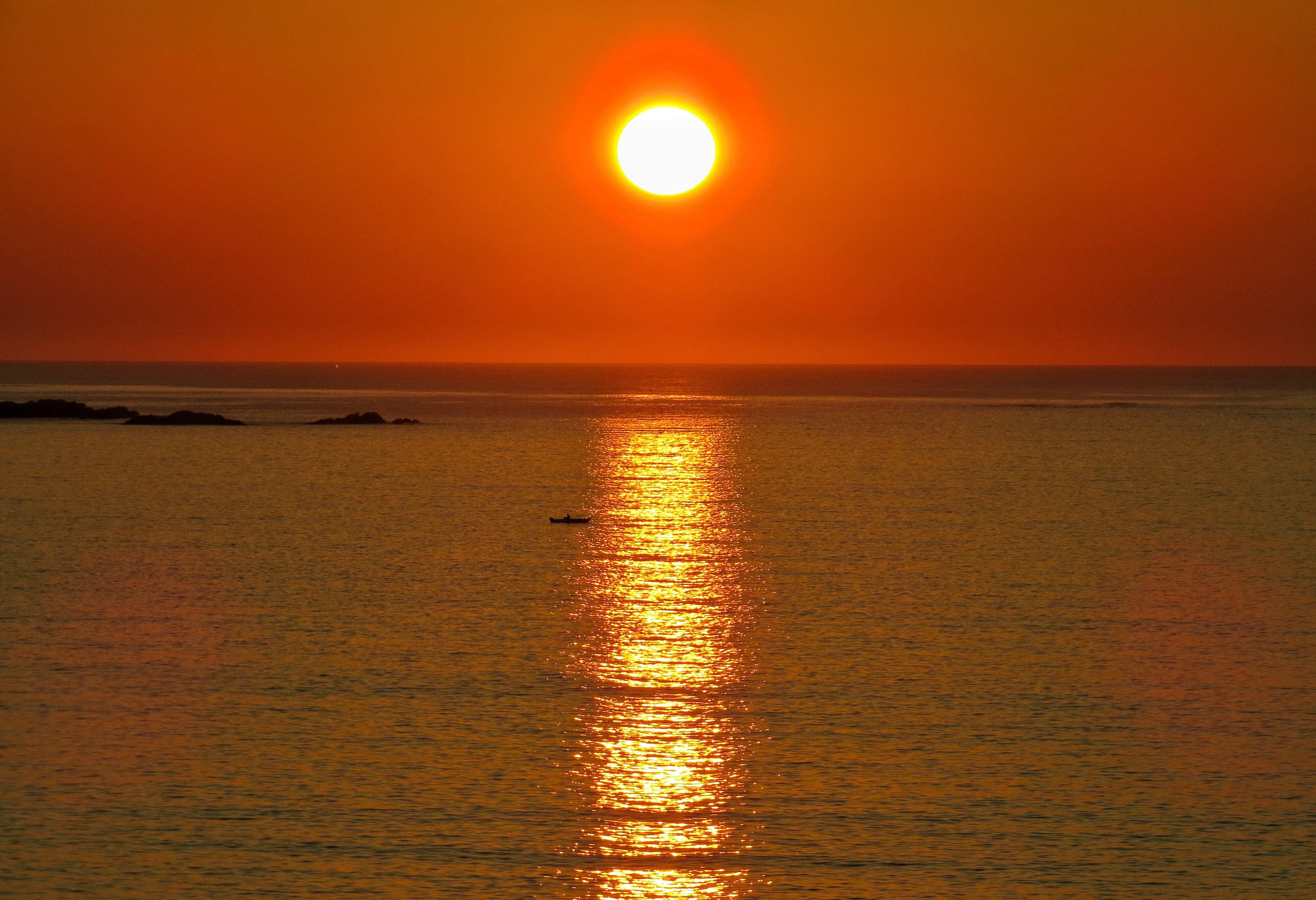 Seasafari Øksnes, Seasafari Øksnes - Midnight sun safari