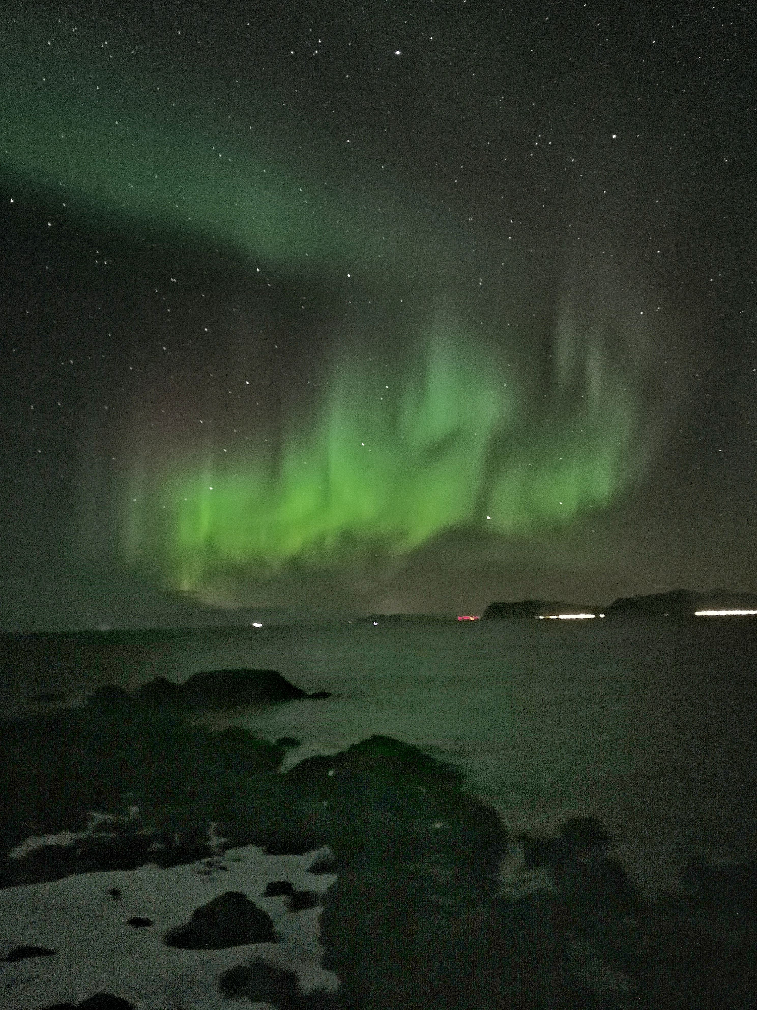Seasafari Øksnes, Seasafari Øksnes - Nordlyssafari