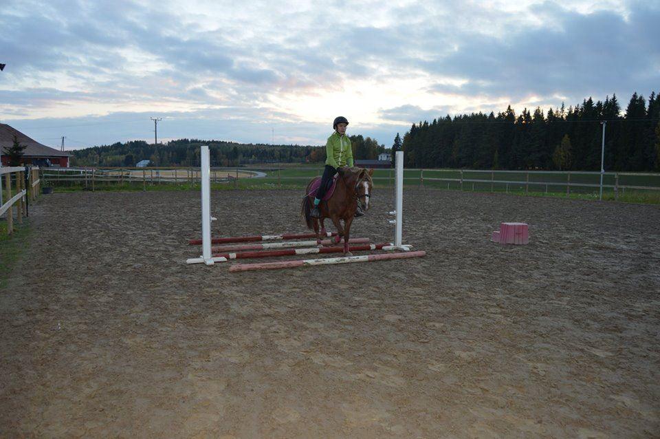 Toukola horse farm