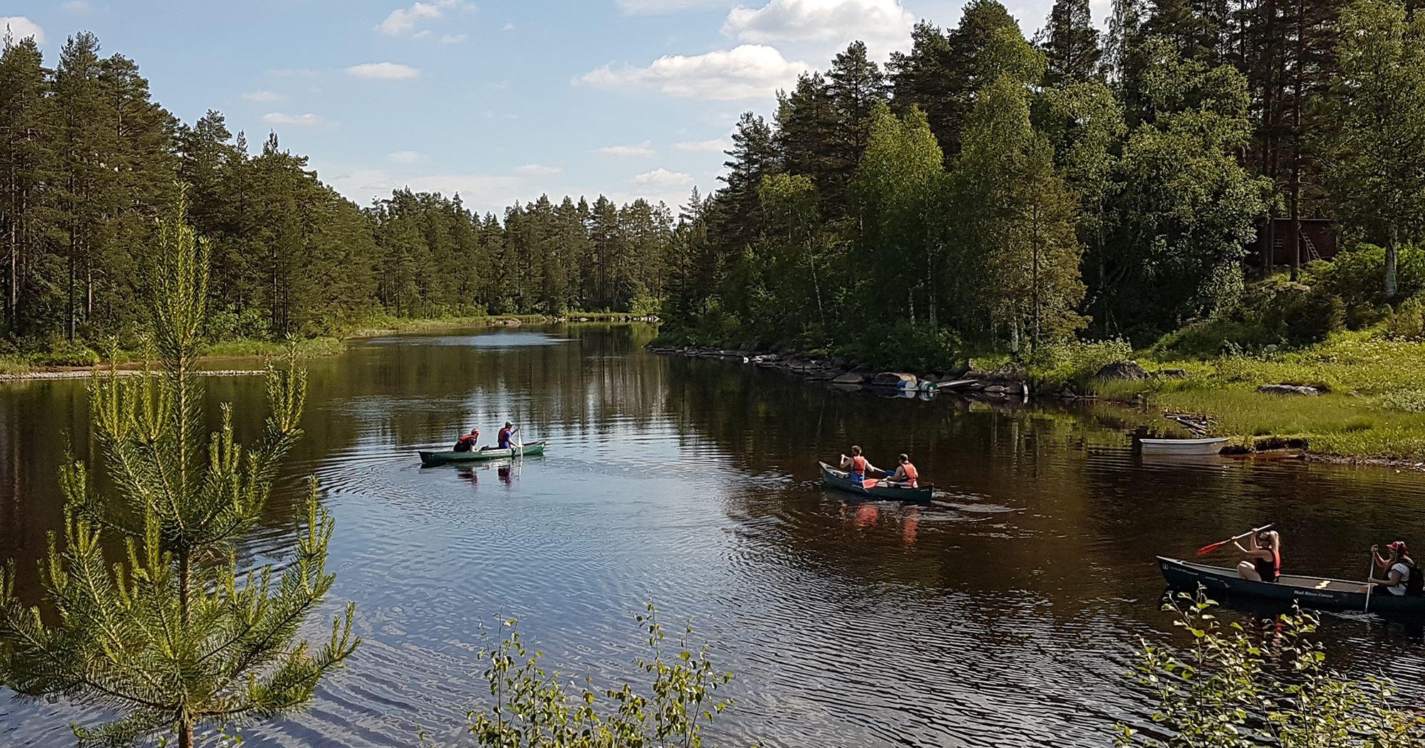 Paddla kanot en dag i vackra Voxnan