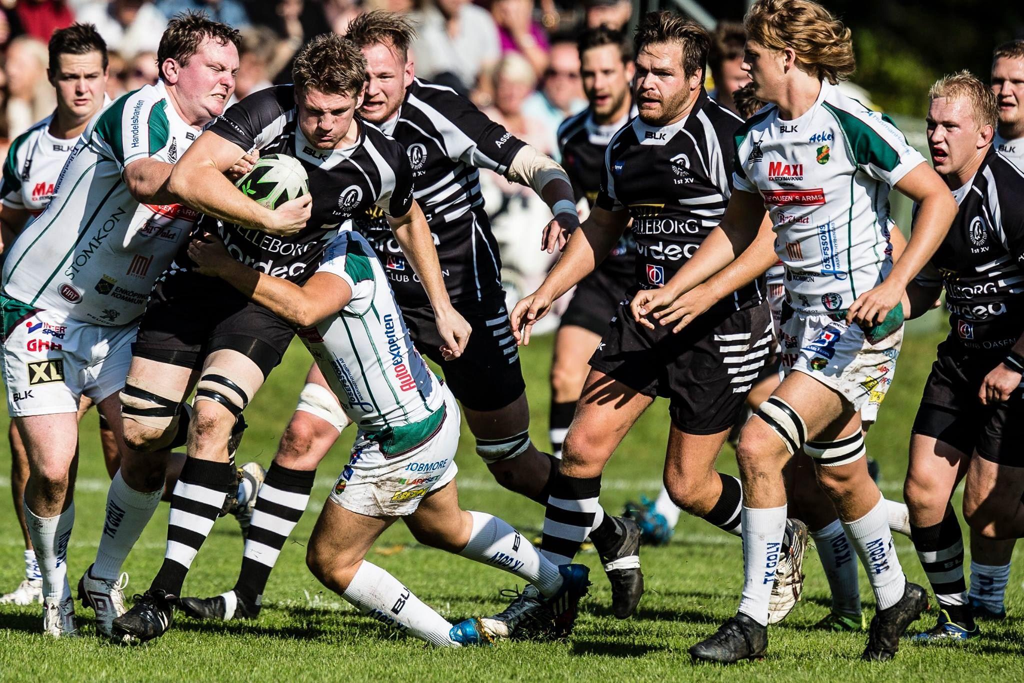 Pingvin Rugby Club - Årets rugbyallsvenska herrar