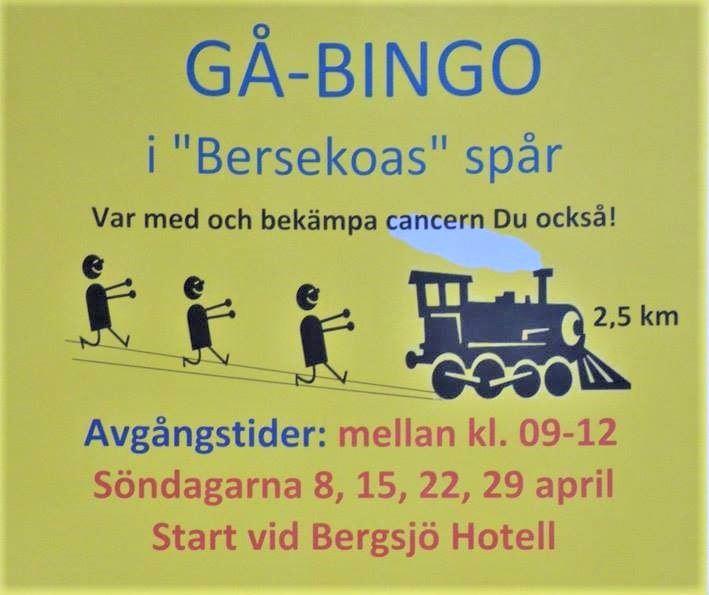 Gå-bingo i Bergsjökoa´s spår