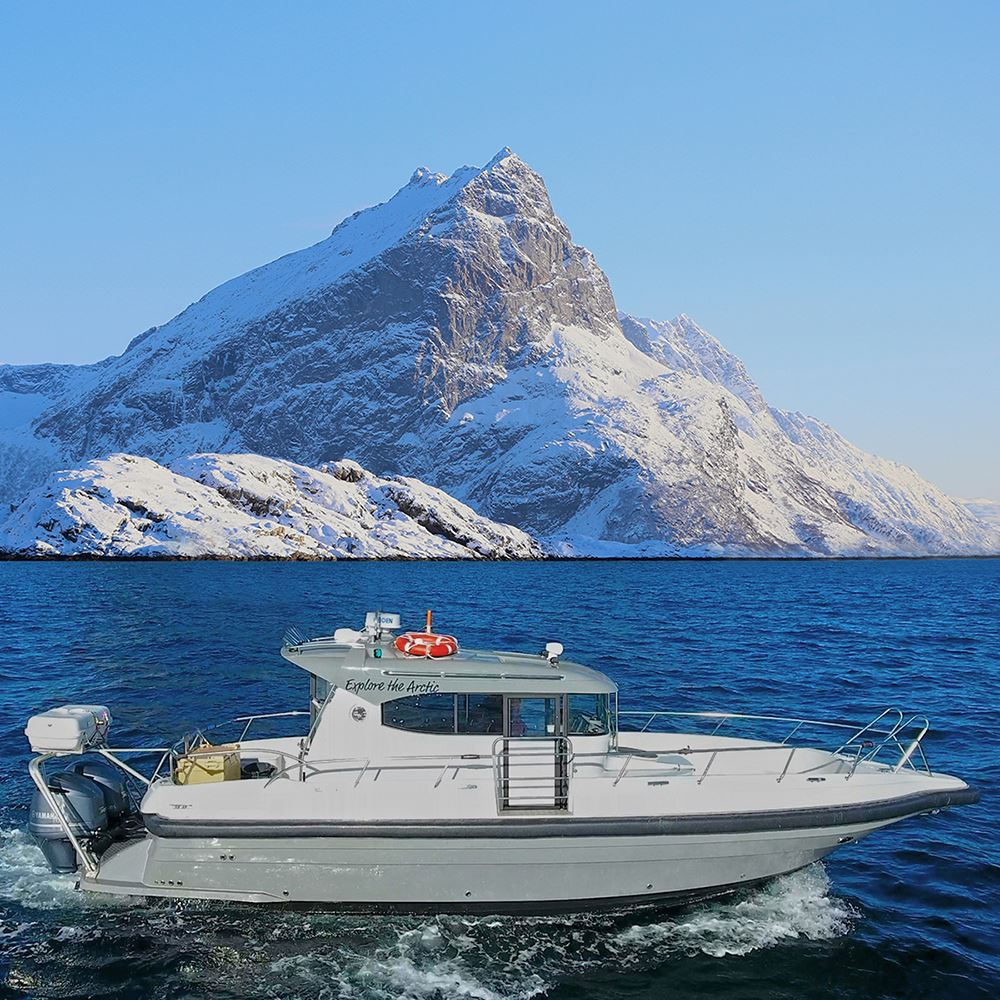 Vinter fjord cruise – Explore The Arctic