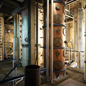 Führung durch die Destillerie von Savanna