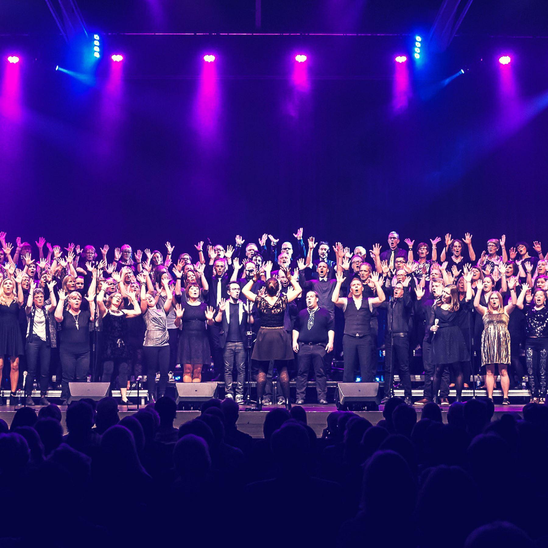 VINYL - Konsert med Pop- & rockkören