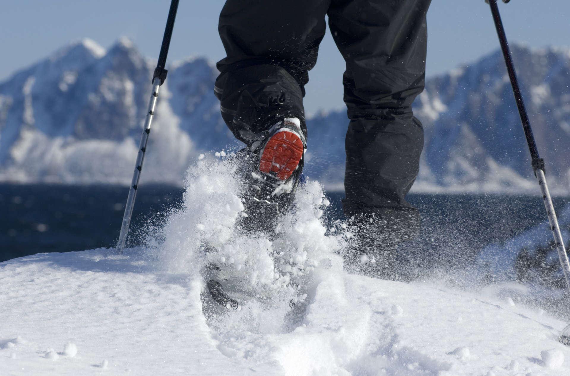 Terje Rakke,  © VisitNorway, Halvdagstur på truger med Lofoten Aktiv
