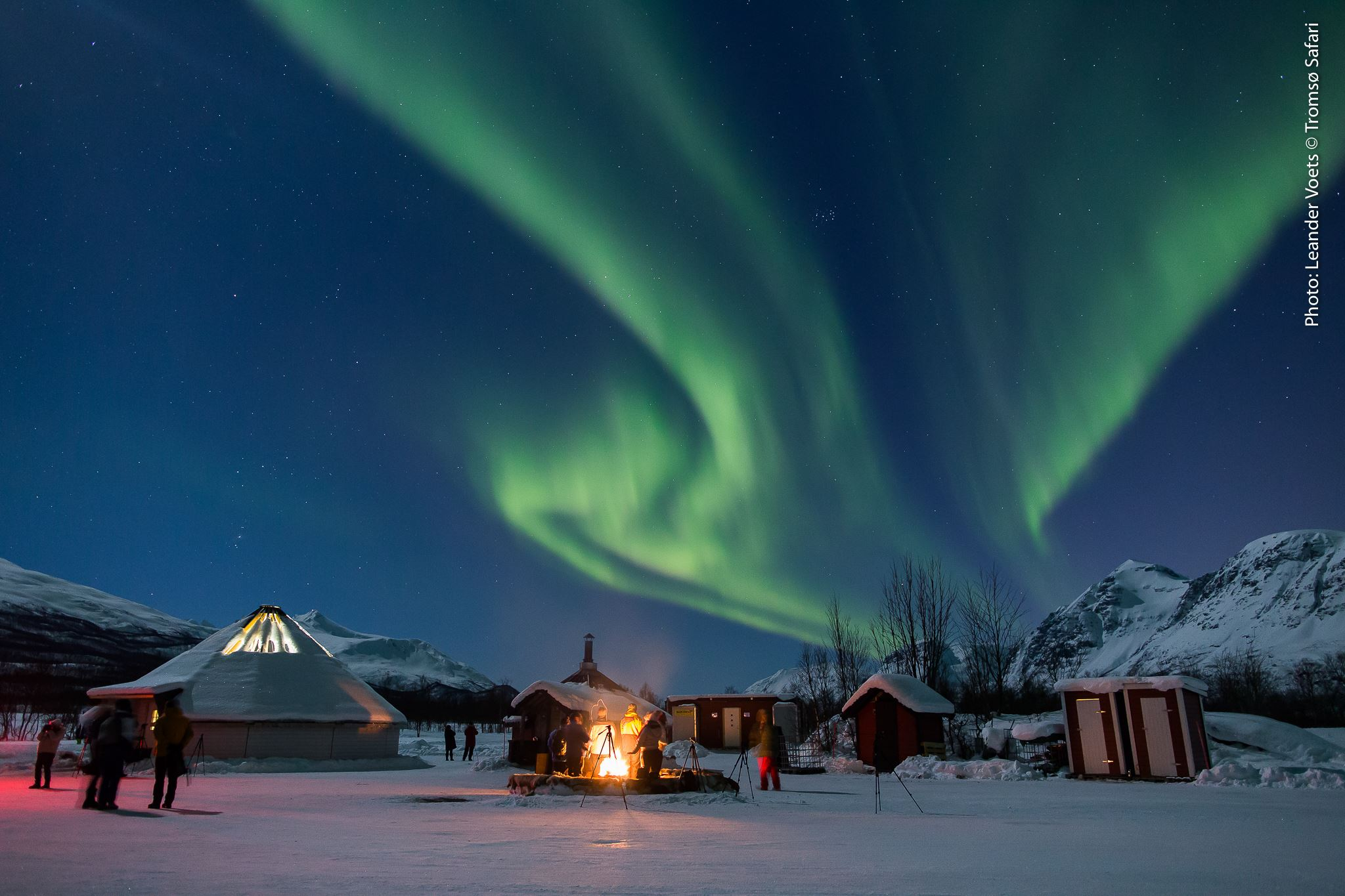 Aurora Safari Base Stations