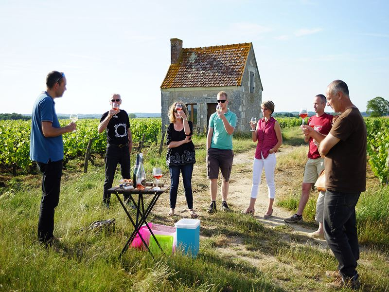EXCURSION GUIDEE EN MINIBUS DANS LE VIGNOBLE APRES-MIDI TOURAINE & CHINON
