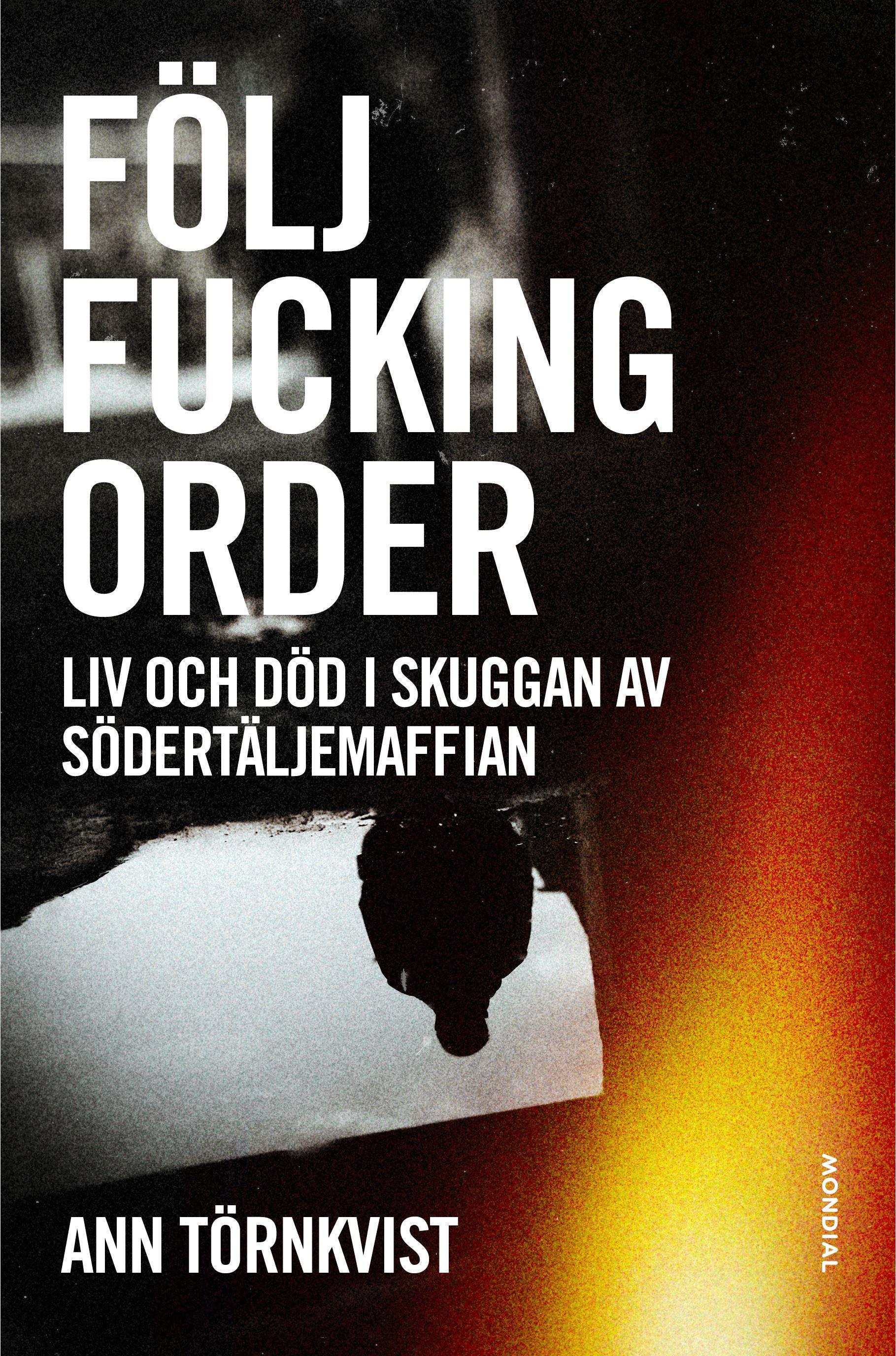 Författarbesök med Ann Törnkvist