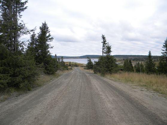 Birkebeiner road