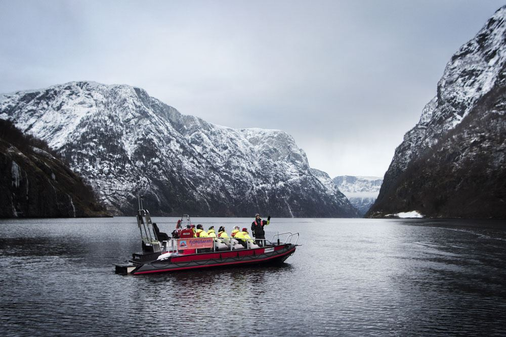 © Thea Hermansen, Vinter FjordSafari