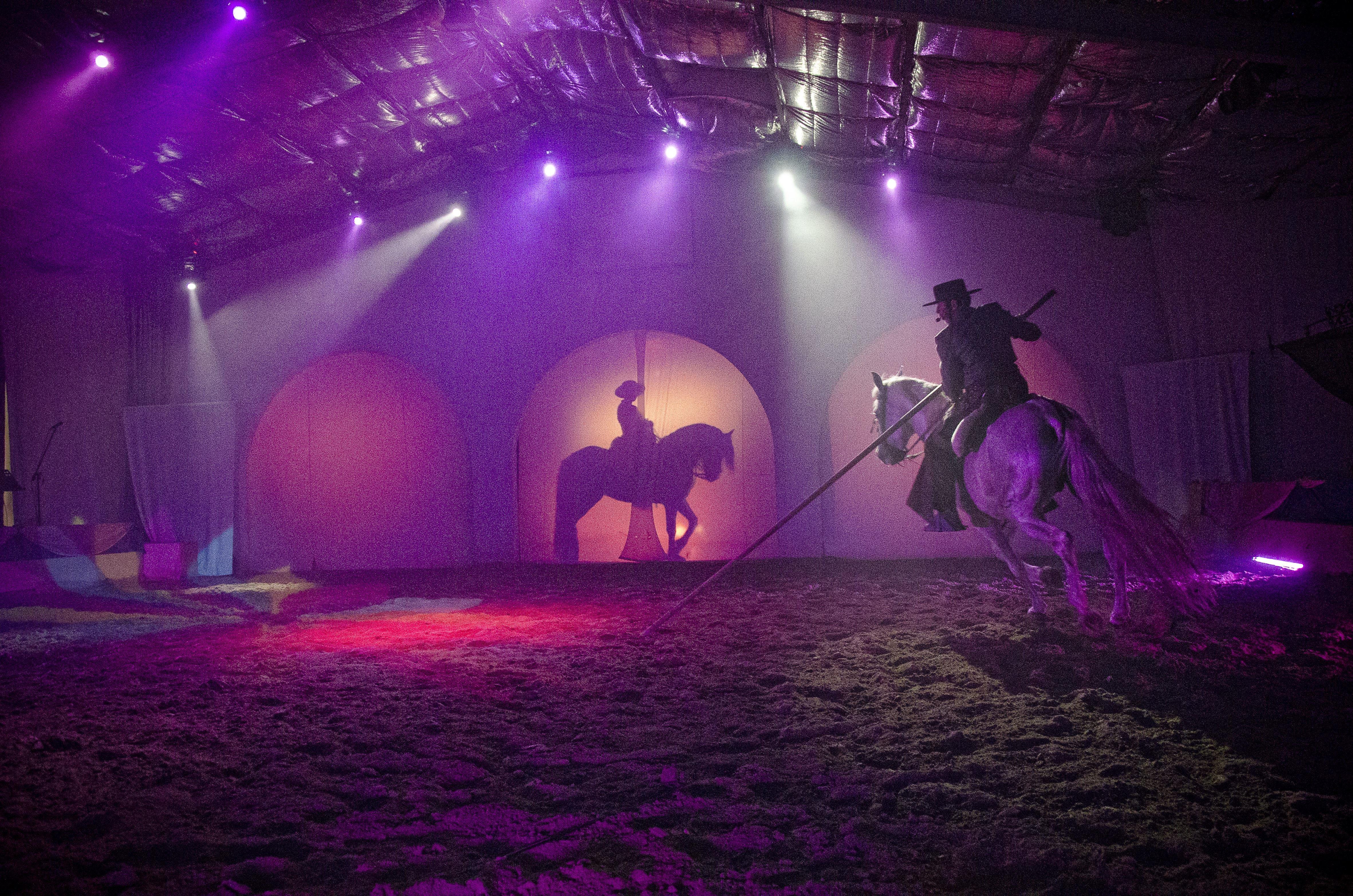 Dinner-Horses show