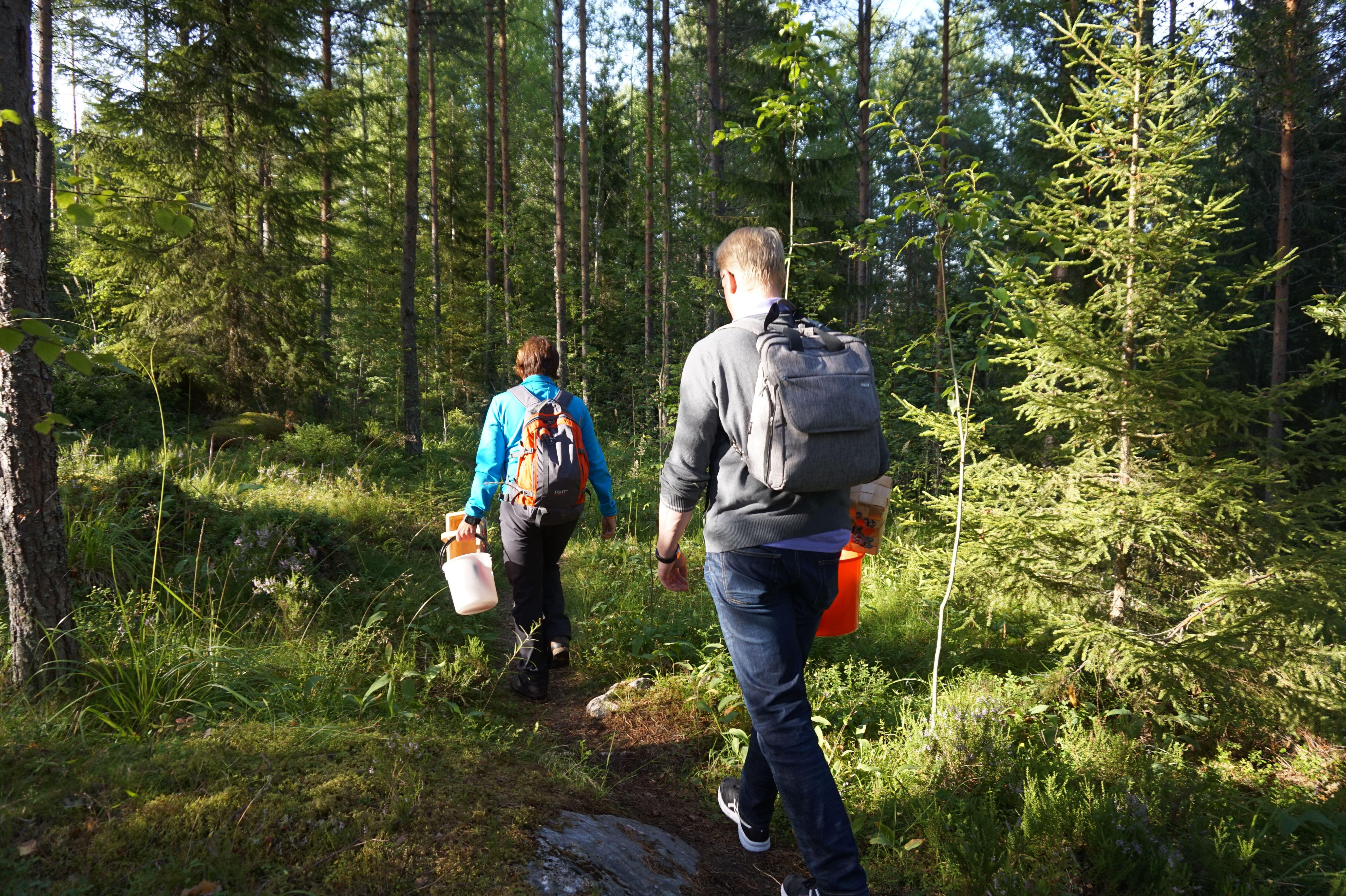 Villiruokaa metsästä -luontoretki | Best Lake Nature Adventures