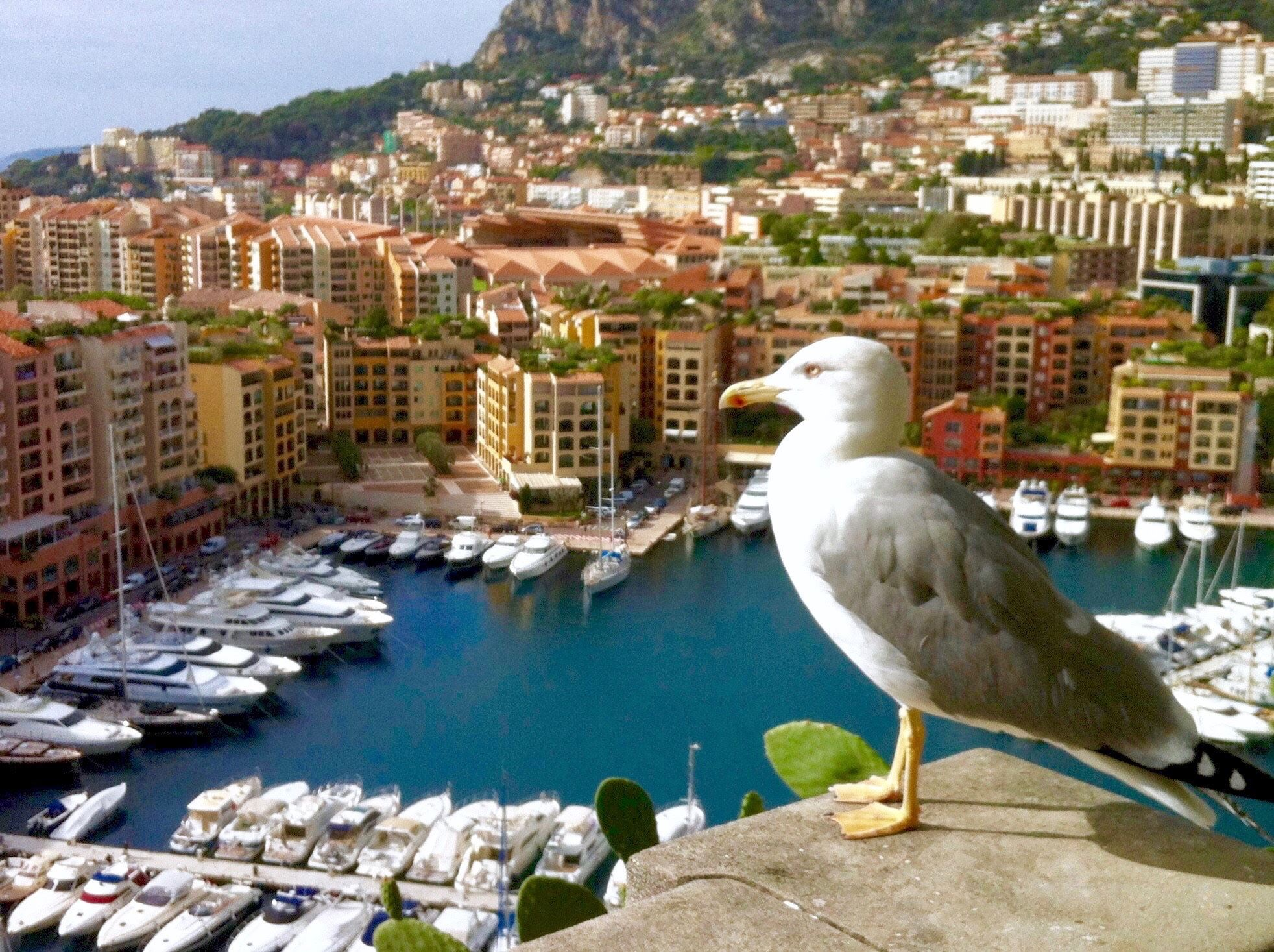 Monaco, Cannes et la french Riviera