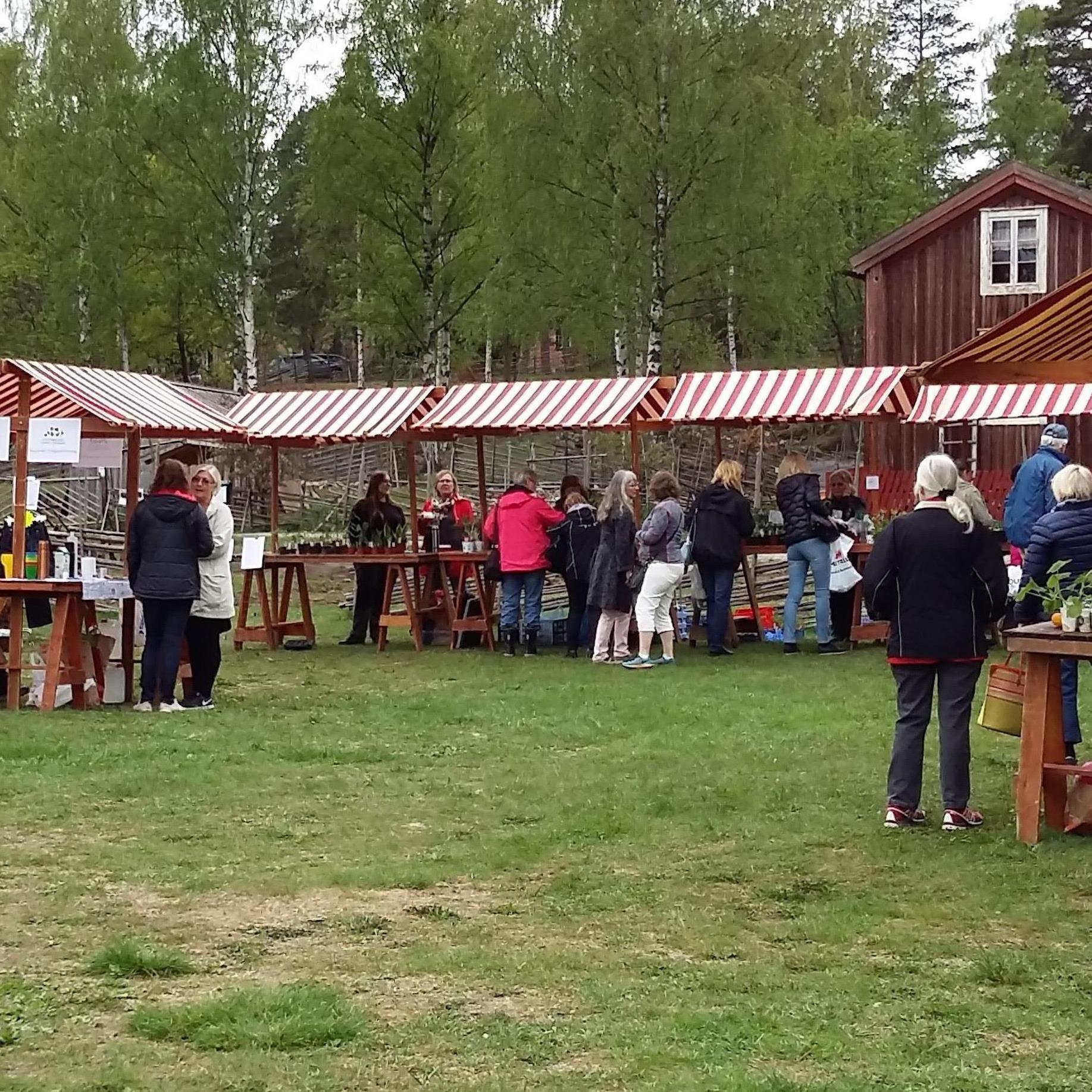 Trädgårdsmarknad på Norra Berget