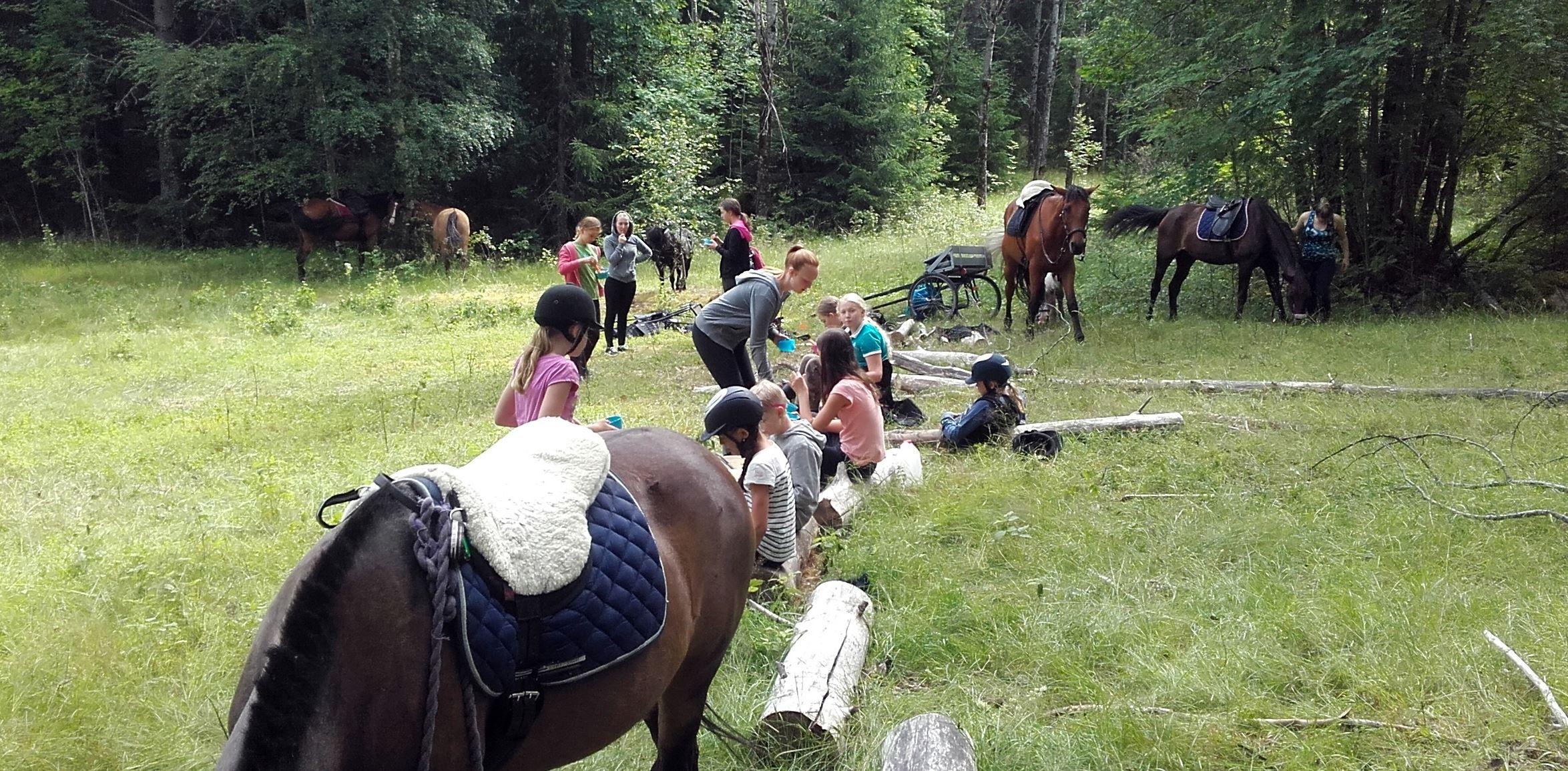 Ridläger dagläger för nybörjare från 5 år