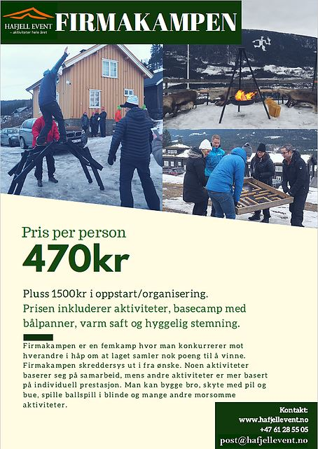 Activities for the conference in Hafjell