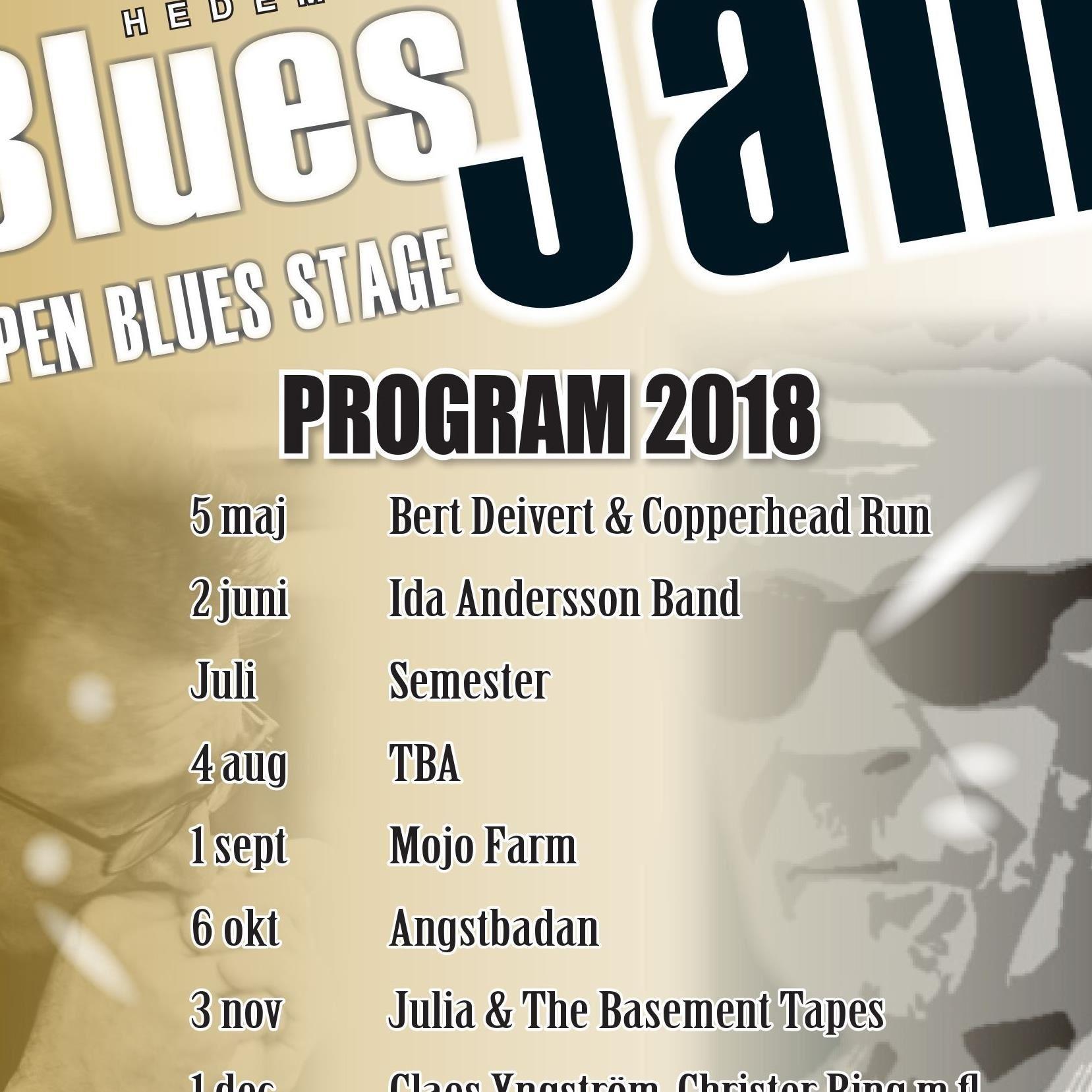 Hedemora Blues Jam - Claes Yngström, Christer Ring