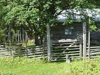 Slåttergille på Hällbergs fäbodar