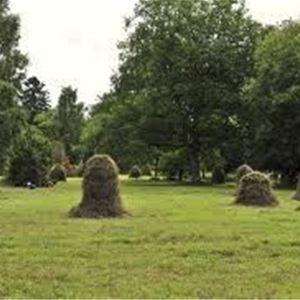 Slåttergille på Hackgården i Nederberga