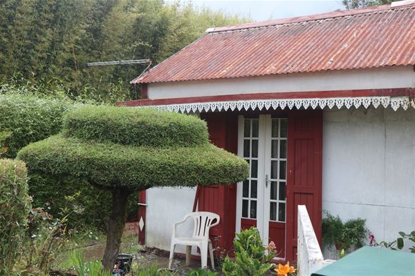 A tour of Creole houses in La Plaine des Palmistes