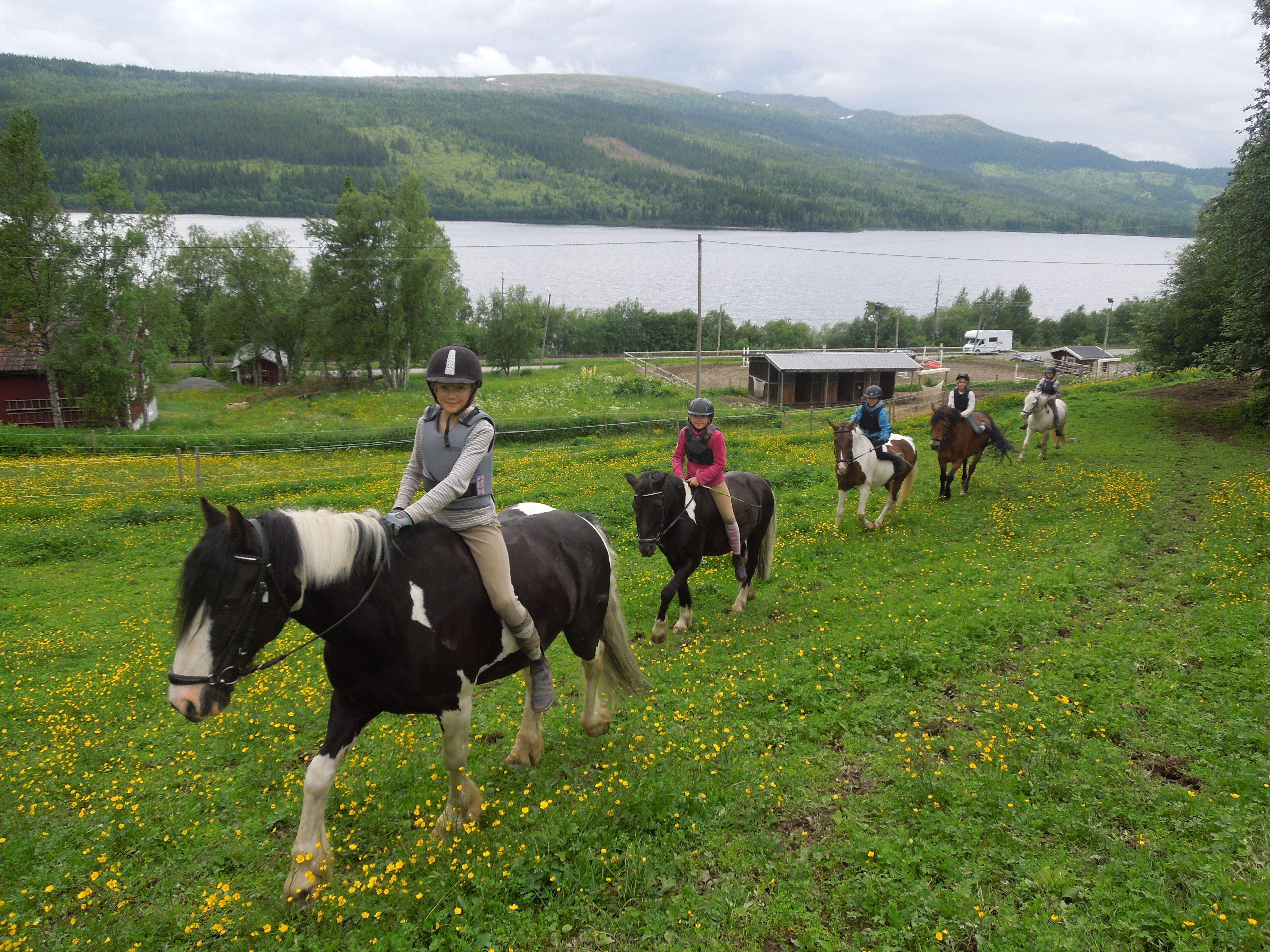 Halvdagsridläger i Åre