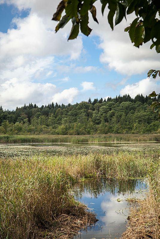 Siesjö Östra - naturreservat