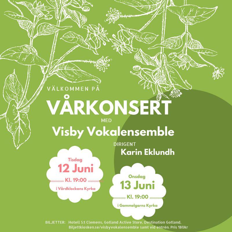 Vårkonsert med Visby Vokalensemble i Visby